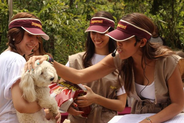 Dogourmet realizó casting de perritos para su Calendario 2018