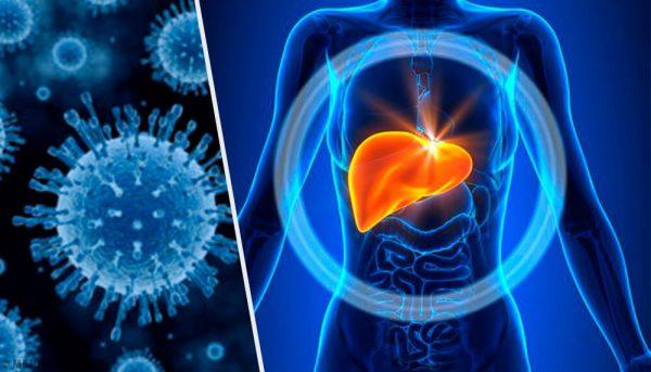 5 Medidas para prevenir la Hepatitis