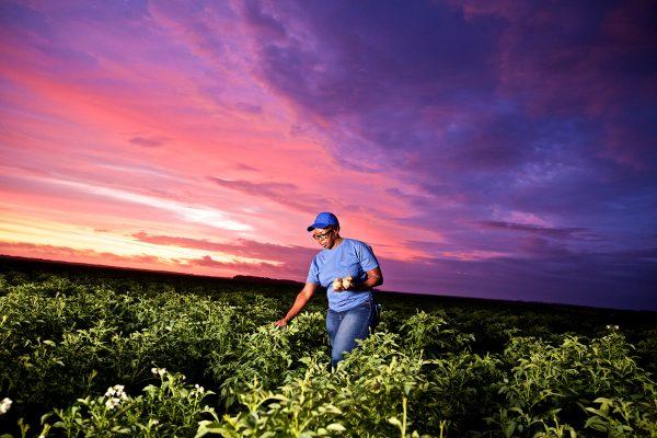 """PepsiCo anuncia el programa """"Agricultura Positiva"""" con nuevas metas globales para 2030 con el objetivo de ampliar sus prácticas agrícolas regenerativas en beneficio de las comunidades"""